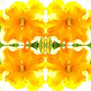 bloem 24 van Margriet Snaterse