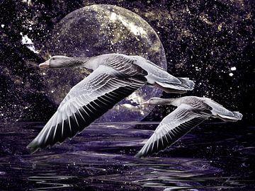 Wilde ganzen haasten door de nacht .......... van Christine Nöhmeier