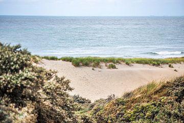 Duinen en  Zee van