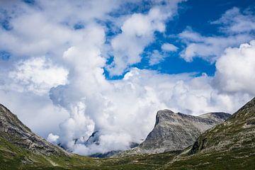 Berge in Norwegen von Rico Ködder