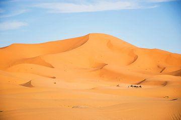 Woestijn bij Erg Chebbi, Marokko tijdens zonsondergang, gouden duinen met kamelen karavaan. van Marjolein Hameleers