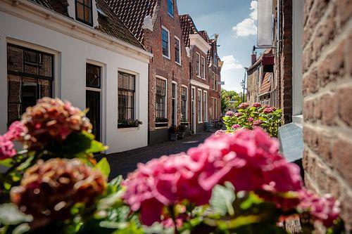 Smal straatje met Nederlandse gevelhuisjes in oud stadje