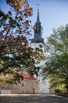 Tallinner Domkirche, Tallinn, Estland, Europa von Torsten Krüger