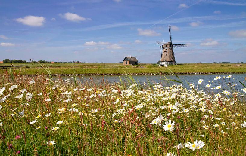 Landschap van Texel 2.  Landscape of Texel 2. van Justin Sinner Pictures ( Fotograaf op Texel)