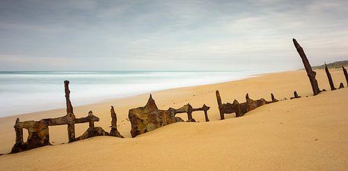 Trinculo Shipwreck van