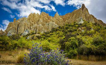 Clay Cliffs, Omarara, Nieuw Zeeland van Rietje Bulthuis