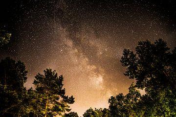 Melkweg door de bomen van Annemarie Goudswaard