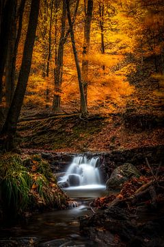 Chute d'eau dans une scène d'automne sur Alexander Mol