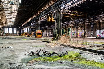Alte Fabrik aus der DDR Lost Places von Animaflora PicsStock