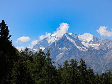 Alpen uitzicht van Marieke Funke