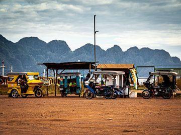 Lokale Transportmittel von Rik Pijnenburg