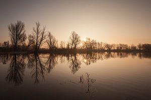 De Oude Rijn in Lobith na zonsopkomst