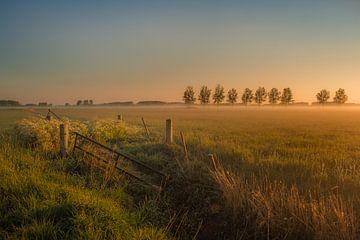 Betuwe-Landschaft von Moetwil en van Dijk - Fotografie