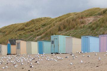 Chalets de plage sur Texel sur Jolene van den Berg