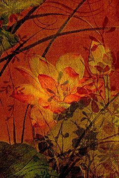 Motifs floraux sur Anouschka Hendriks