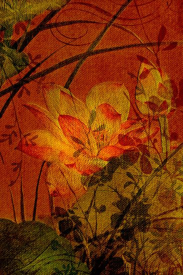 Bloemenpatronen