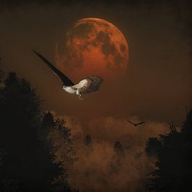 Valken jagen in de avond van Jan Keteleer