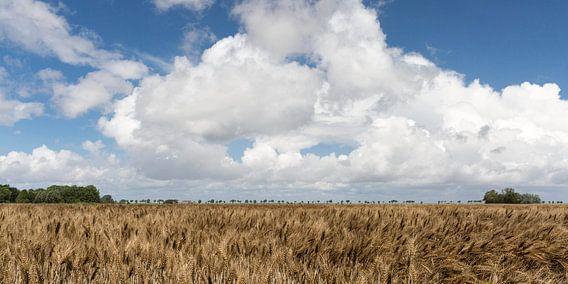 Nederlands landschap van Etienne Oldeman