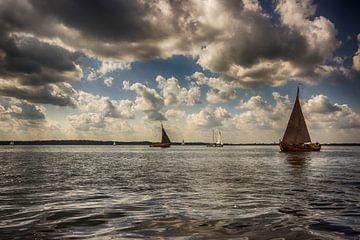 Over het water van Wim Hal