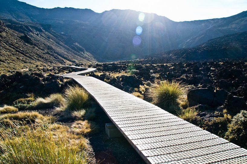 Tongariro Crossing van Lieke Doorenbosch