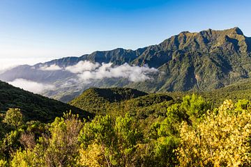 Berge bei  Sao Vicente auf Madeira von Werner Dieterich