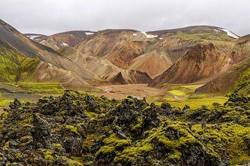 Landmannalaugar, IJsland van Frank Laurens