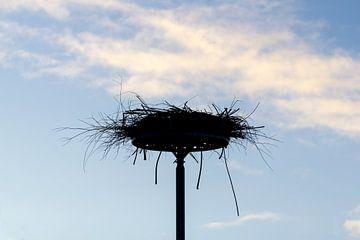 ooievaars nest van ton vogels