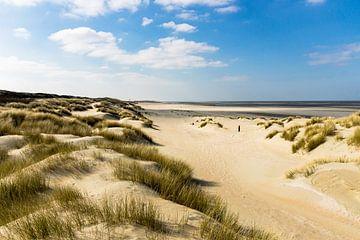 Duinen, Strand en Zee van