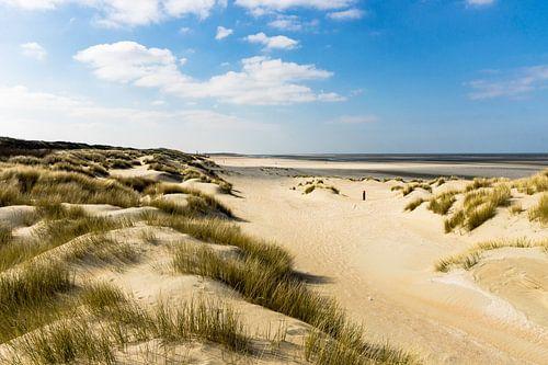 Duinen, Strand en Zee