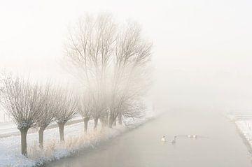 mistig landschap in de winter sur