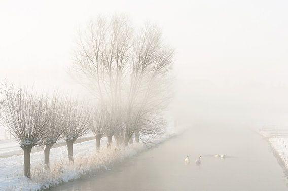 mistig landschap in de winter van Dirk van Egmond
