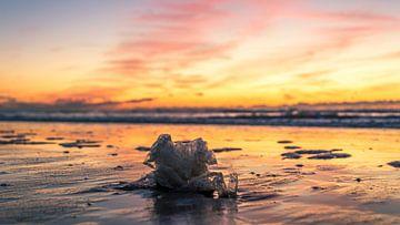Plastic op het strand sur Richard Steenvoorden