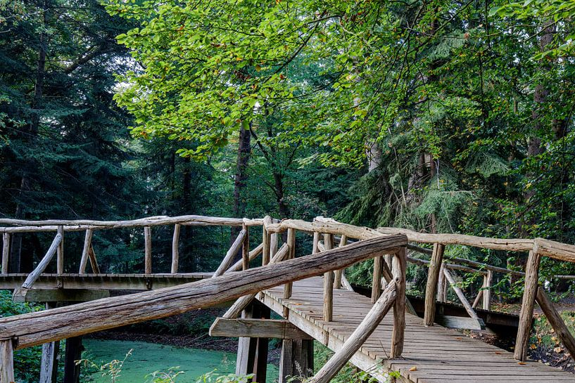 Hölzerne Brücke von Anjo ten Kate