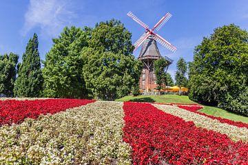 Blumen vor der Windmühle in Bremen von Marc Venema