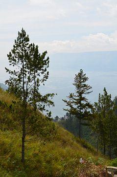 Een groene heuvel in Indonesie van Esther Kruik