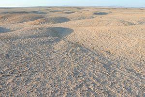 Sinai woestijn van Gerrit van Leeuwen