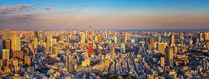 Tokyo Panorama van