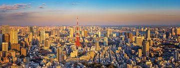Tokyo Panorama sur Sander Peters Fotografie