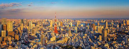 Tokyo Panorama von Sander Peters Fotografie