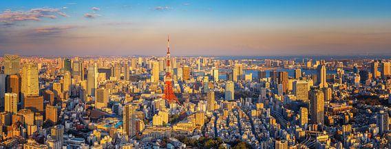 Tokyo Panorama van Sander Peters Fotografie