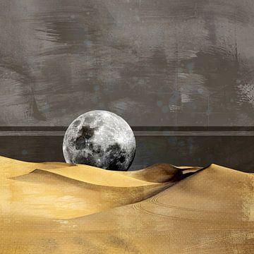 MOON DESERT van