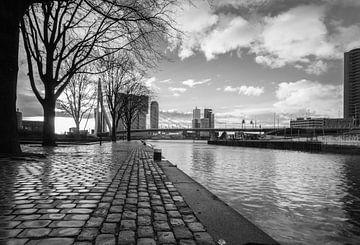 Kop van Zuid Rotterdam in zwart wit van Ilya Korzelius