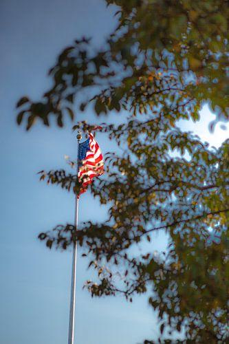 USA vlag, New York van