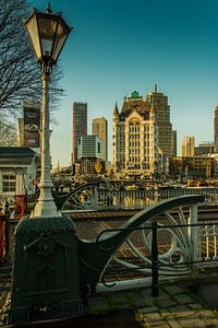 WItte huis in Rotterdam met Skyline van