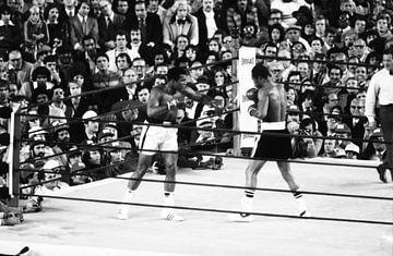 Ali contre Ken sur Jaap Ros