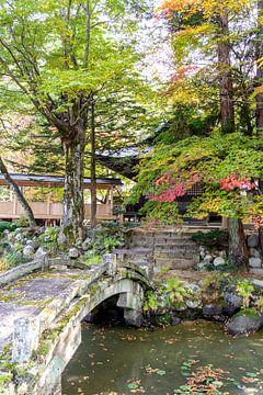 Japanse tuin met brug van Mickéle Godderis