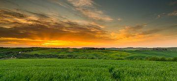 Zonsondergang in Toscane sur Damien Franscoise