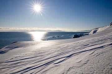 Spitzbergen von Marieke Funke