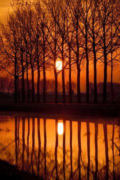 De opkomende zon langs de rivier de Linge in de gemeente Overbetuwe. van Jurjen Jan Snikkenburg