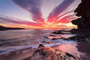 Küste bei  Sonnenuntergang, Fuerteventura, Kanarische Inseln, Spanien von Markus Lange